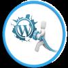 Themenology.net WordPress icon